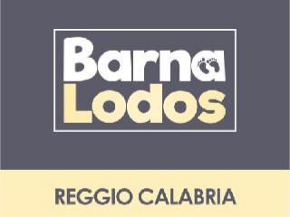 BarnaLodos